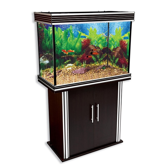 Nautilus 49-gallon Silver Trim Aquarium and Stand