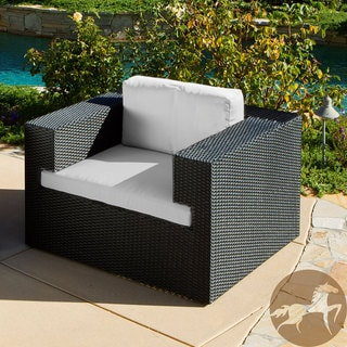 Christopher Knight Home Indoor/ Outdoor Resin Wicker Deep Seating Club Chair