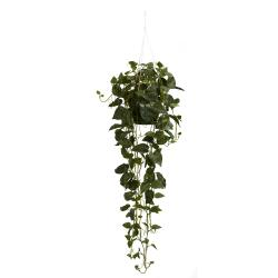 Silk 44-inch Hanging Philodendron Plant