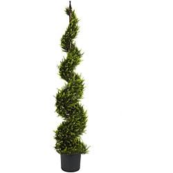 Cypress Spiral 5-foot Silk Tree