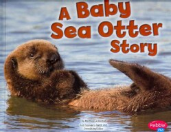 A Baby Sea Otter Story (Hardcover)