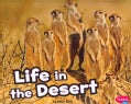 Life in the Desert (Paperback)