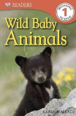 Wild Baby Animals (Paperback)