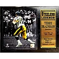 Encore Select Pittsburgh Steelers Terry Bradshaw Plaque