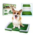 Puppy Potty Trainer Indoor Grass Training Patch