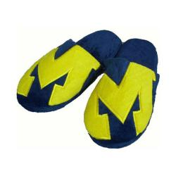 NCAA Michigan Wolverines Big Logo Slippers