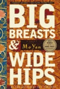 Big Breasts and Wide Hips: A Novel (Paperback)