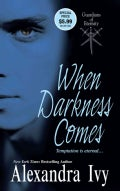 When Darkness Comes (Paperback)