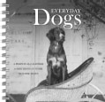 Everyday Dogs: A Perpetual Calendar for Birthdays and Other Notable Dates (Spiral bound)