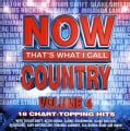 Various - NOW Thats What I Call Country 4