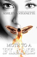 Moth to a Flame (Paperback)