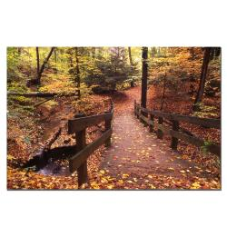 Kurt Shaffer 'Autumn Bridge' Canvas Art