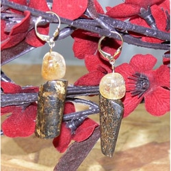 Susen Foster Goldplated 'Golden Goose' Bronzite and Citrine Earrings