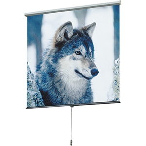 Draper Luma 207205 Manual Projection Screen - 100
