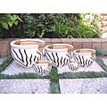 International Caravan Zebra Pattern Fishbowl Planters with Rope Wrapped Handles (Set of 5)