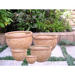 International Caravan Cheetah Pattern Rope-wrapped Handle Fishbowl Planters (Set of 5)