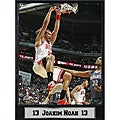 Chicago Bulls Joakim Noah Plaque