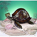 Deco Breeze DBF0378 Sea Turtle Figurine Fan