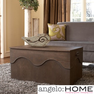 angelo:HOME Kara Trunk Coffee Table