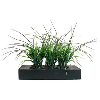 Laura Ashley Green Grass in Contemporary Wood Planter