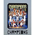 2011 Dallas Mavericks NBA Champions Matted Photo