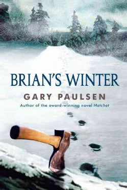 Brian's Winter (Paperback)