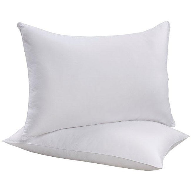 Back-to-School Bed Pillows (Set of 2) at Sears.com