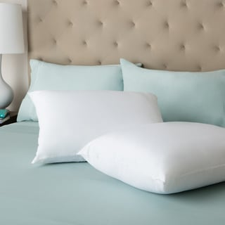 Back-to-School White Cotton Bed Pillows (Set of 2)