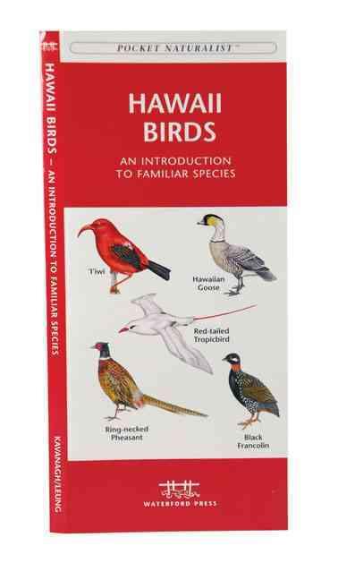 Hawaii Birds: A Folding Pocket Guide to Familiar Species (Paperback)