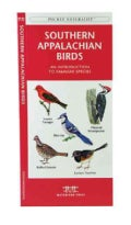 Southern Appalachian Birds: A Folding Pocket Guide to Familiar Species (Paperback)