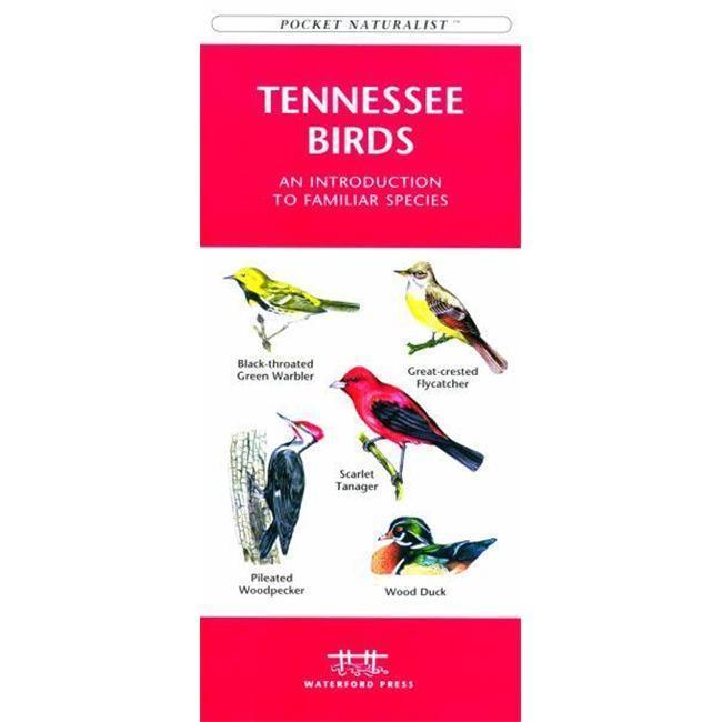 Tennessee Birds Book