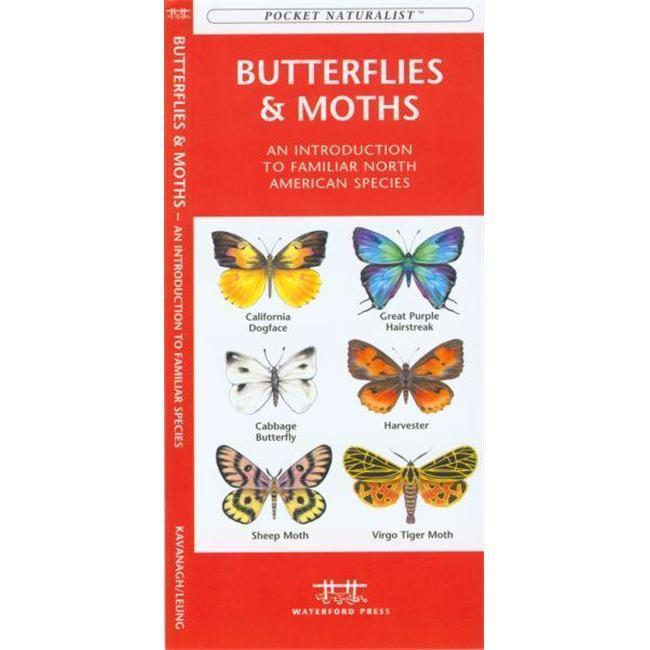 Butterflies amp; Moths Book
