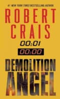 Demolition Angel (Paperback)