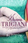 Big Stone Gap: A Novel (Paperback)