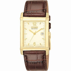 Citizen Men's Stainless Steel Brown Leather Watch