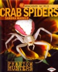 Crab Spiders: Phantom Hunters (Hardcover)