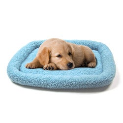 Blue 2000 Sheepskin Machine-washable Bumper Pet Bed (25 inches x 20 inches)