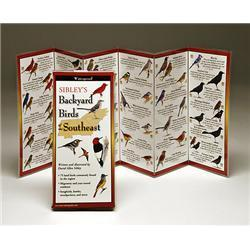 Sibleyapos;s Backyard Birds Southeast Book