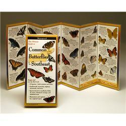 Common Butterflies Southeast Book