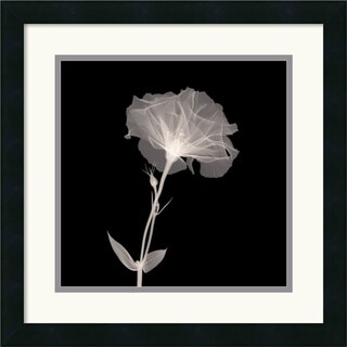 Bud in Bloom' 18 x 18-inch Framed Art Print