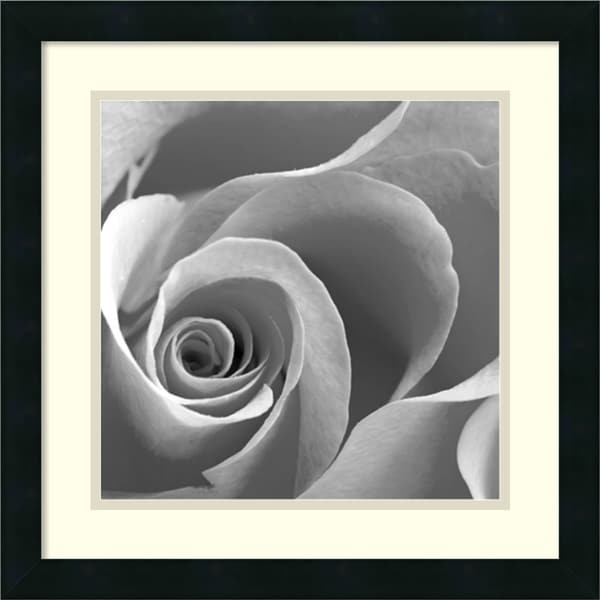 Rose Spiral II' Framed Art Print