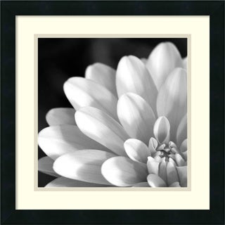 'Radiating Petals' Framed Art Print