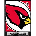 2011 Arizona Cardinals Plaque