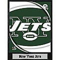 2011 New York Jets Logo Plaque (9 x 12)