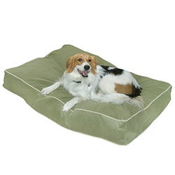 Busby Medium (30 x 42) Moss Dog Bed
