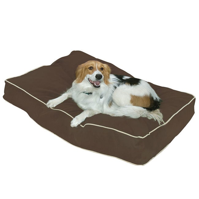 Busby Large (36 x 48) Cocoa Dog Bed