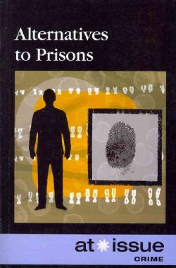 Alternatives to Prisons (Paperback)