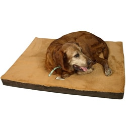 Armarkat Mocha and Brown 24x18-inch Memory Foam Orthopedic Pet Bed Pad