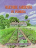 Vegetable Gardening in Florida (Paperback)