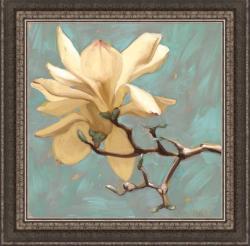 Diane Hoeptner 'Magnolia II' Framed Print
